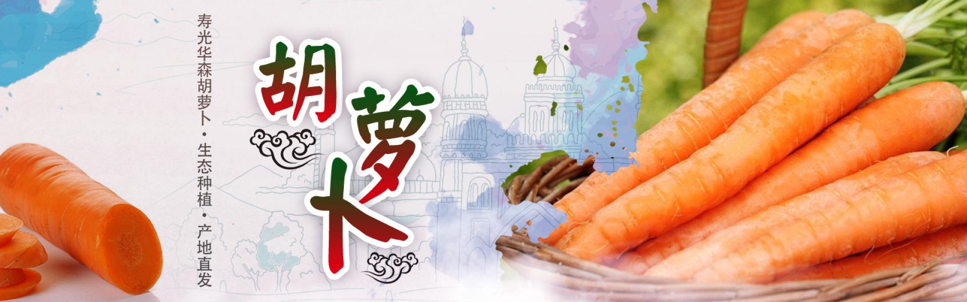 寿光胡萝卜加工,寿光胡萝卜出口,寿光土豆出口销售,寿光绿色蔬菜出口