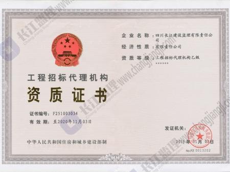 工程招标乙级资质证书