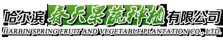 哈尔滨春天果蔬种植有限公司