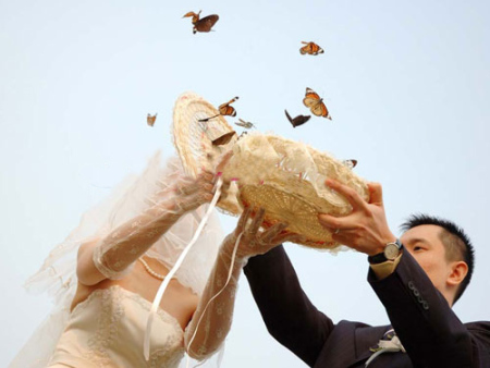 婚礼上蝴蝶放飞的寓意