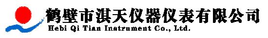 鹤壁市淇天仪器仪表有限公司.