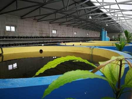 山海农业保温鱼池