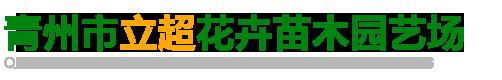 青州市立超花卉苗木园艺场