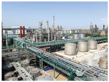 山东华鲁恒升化工股份有限公司10万吨/年醇酮改造项目