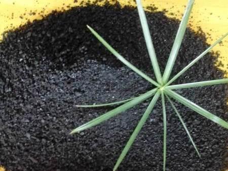 化肥助剂的行业发展分析