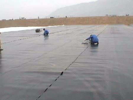 养殖膜厂家: 生态养殖膜处理实现养殖废弃物减量化