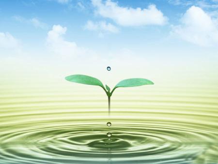 水(含地表水)和废水