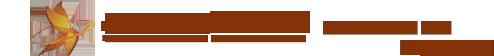 兰州ag在线视频机电有限公司
