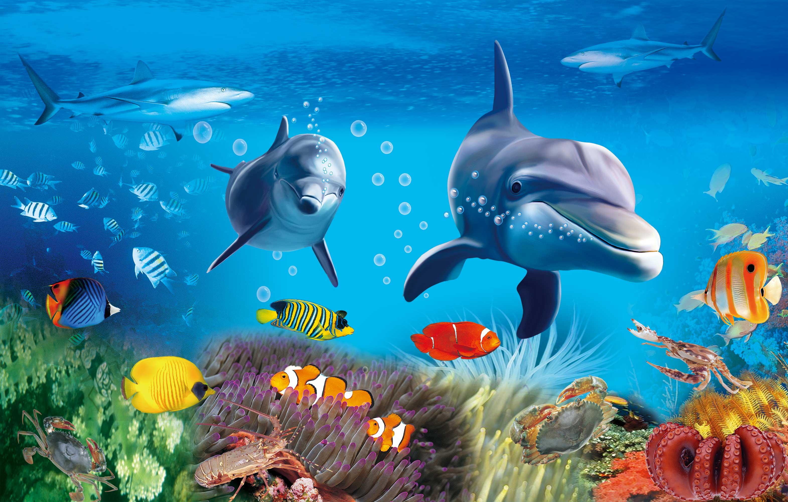 海底世界系列