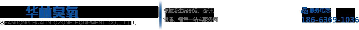 山東華林臭氧設備有限公司