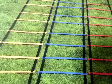 体能训练绳梯 田径成套软式器材系列-沧州鸿艺文体器材有限公司