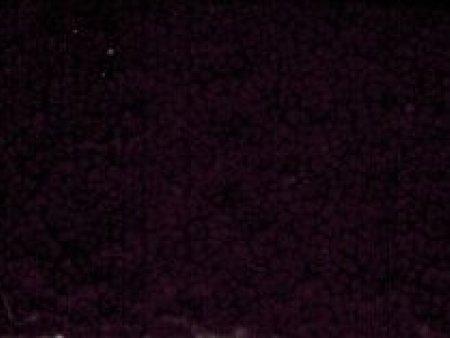 户外4337红皱纹