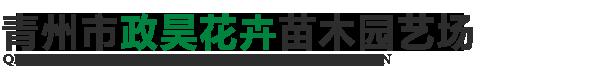 青州市政昊花卉苗木园艺场