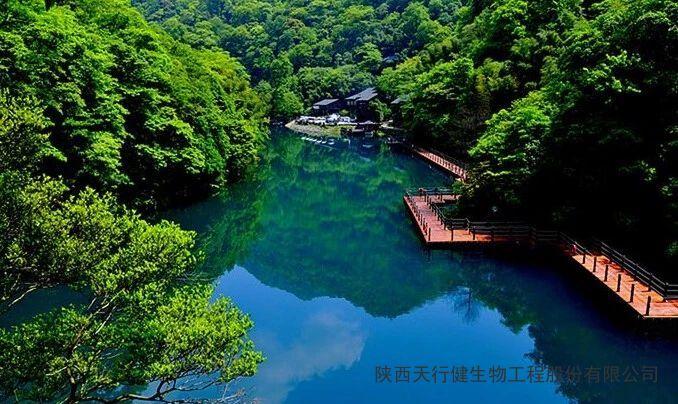 中国自然保护领域历史变革:重构自然保护地新体系