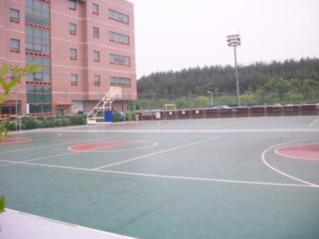 韩国水源产业大学篮球场 烟台出国留学