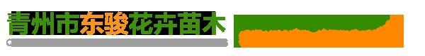 青州市东骏花卉苗木