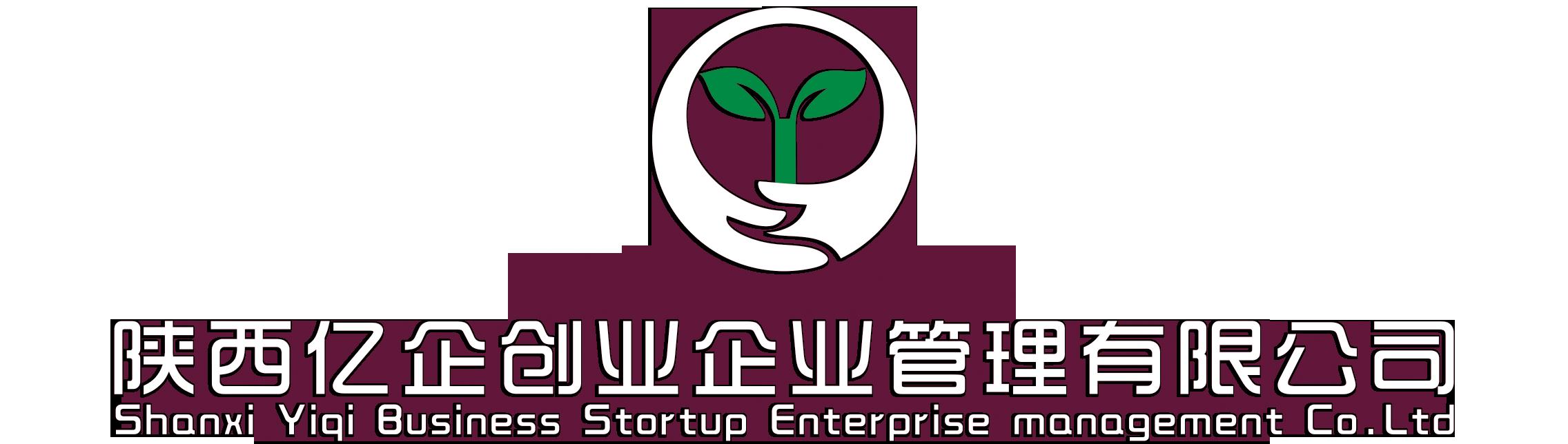 陕西亿企创业企业管理有限公司