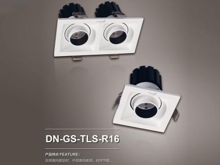 DN-GS-TLS-R16