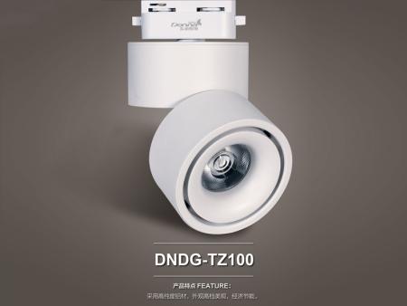 DNDG-TZ100