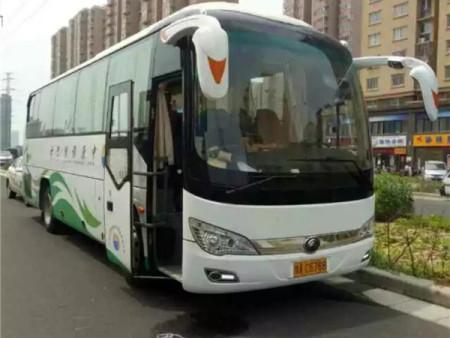 郑州会议租车-19-61座大巴