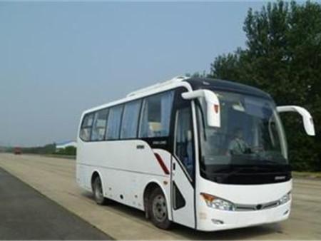 郑州旅游租车-18座丰田考斯特