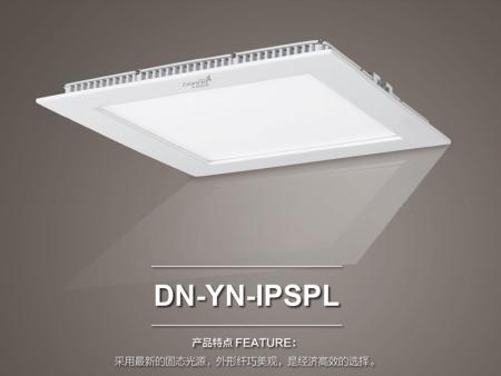 DN-YN-SIPRPL