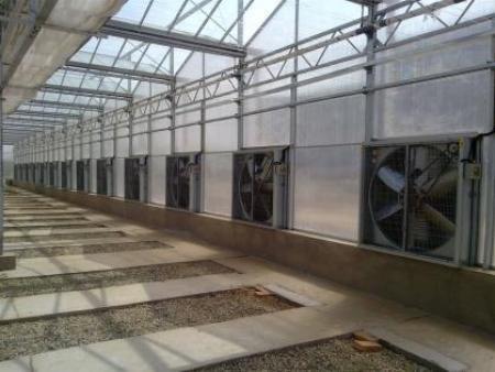 水帘风机安装实例