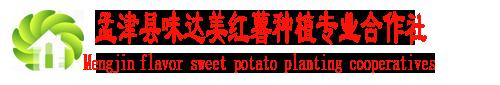 孟津县味达美红薯种植专业合作社