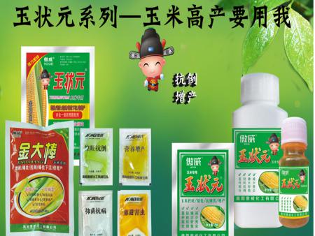 玉狀元金大棒玉米高產系列—新疆的客戶再傳捷報來!