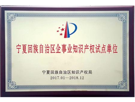 raybet竞彩回族自治区企事业知识产权试点单位