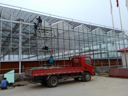 阳光玻璃温室