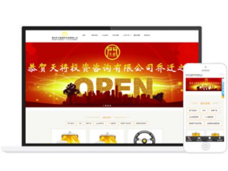 深圳市天将投资咨询有限公司