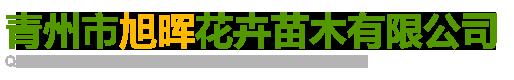 青州市旭暉花卉苗木有限公司