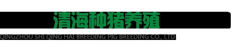 青州市清海种猪养殖有限公司