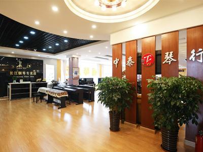 南陽市中泰琴行有限公司-南陽鋼琴專賣-南陽鋼琴培訓-南陽專業樂器銷售