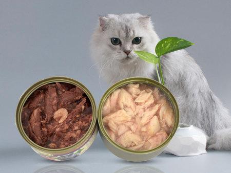 告别干粮,猫咪爱上鲜肉