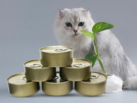 貓罐頭的口味類別主要有哪些?