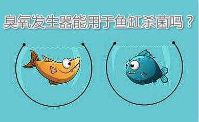 臭氧发生器能用于鱼缸杀菌吗?
