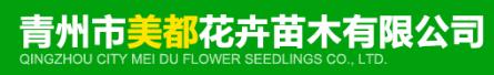青州市美都花卉苗木有限公司