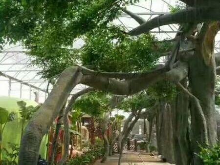 假山 假树