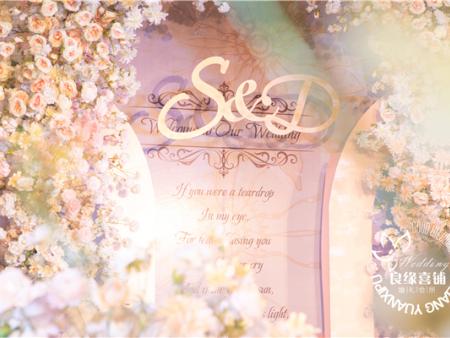 【S&D】-中泰豪生