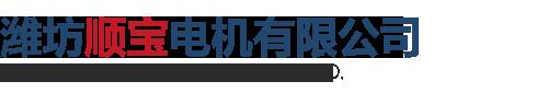 潍坊顺宝电机有限公司