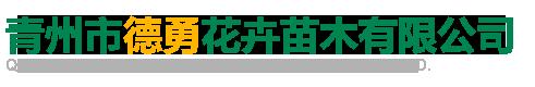 青州市德勇花卉苗木有限公司