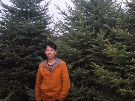 红皮密枝4米
