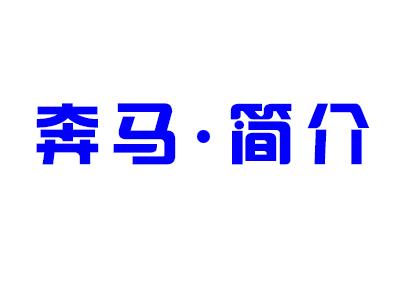潍坊奔马动力设备有限公司【官网】,奔马动力,奔马电力