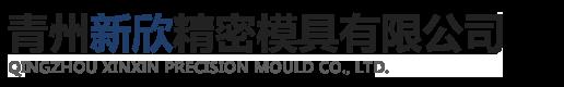 青州新欣精密模具有限公司