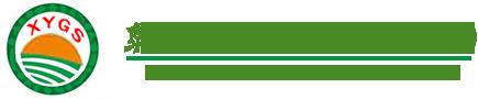 泉州市鲤城区西月果蔬有限公司