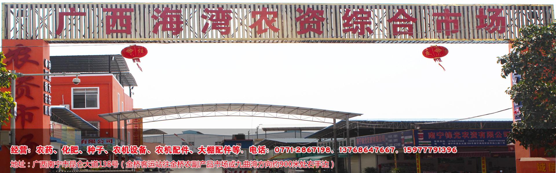 广西农资市场
