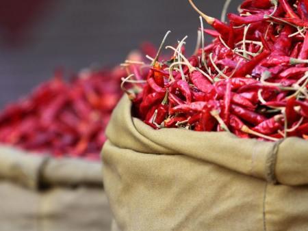 辣椒的性能用途