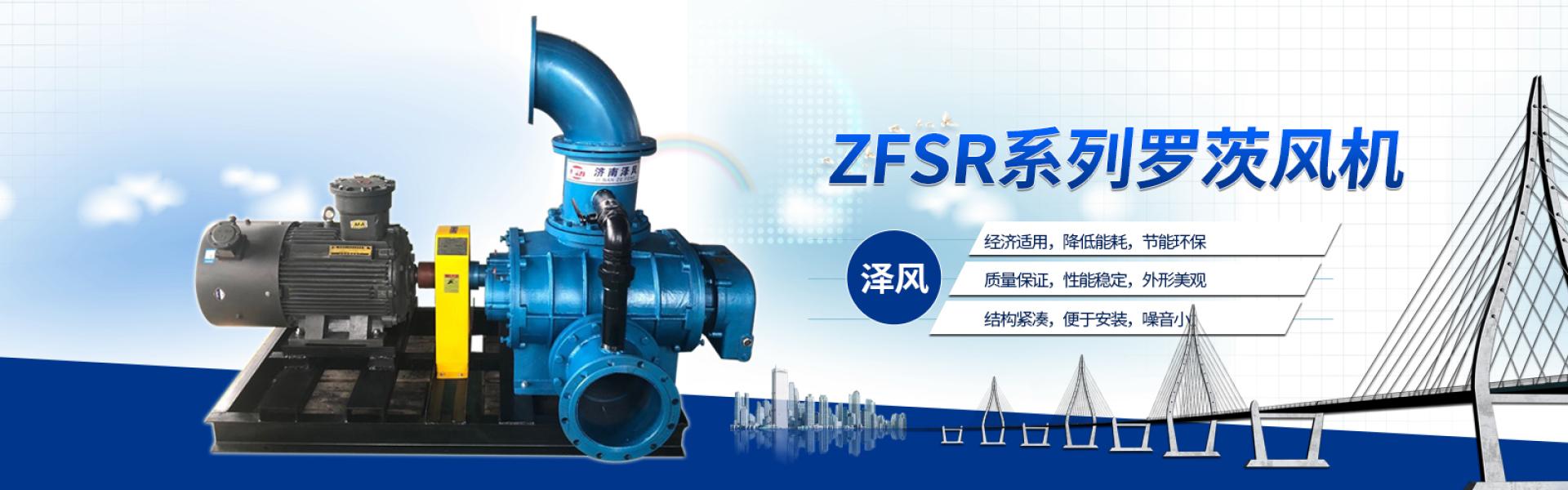 ZFSR250系列特殊氣體輸送風機